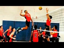 Top 20 Best Volleyball Vines (Pipe)