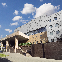 Platonov Academy