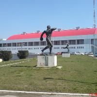 Sala Polivalentă Dinamo