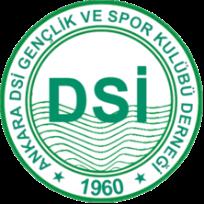 DSİ Spor