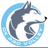 OK Pro Volley