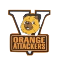 Women Orange Attackers