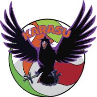 Doris María Voleibol Club