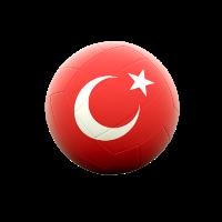 Turkiye Erkekler 1.Voleybol Ligi 2019/20