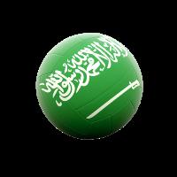 Men Saudi Arabia Super League