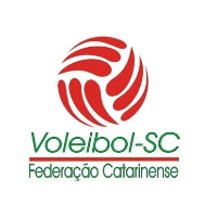 Men Catarinense Championship 2008/09